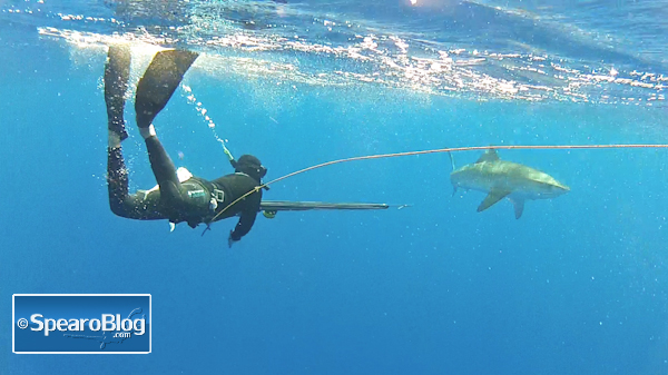 Blue Water Hunting in Oahu with Daryl Wong