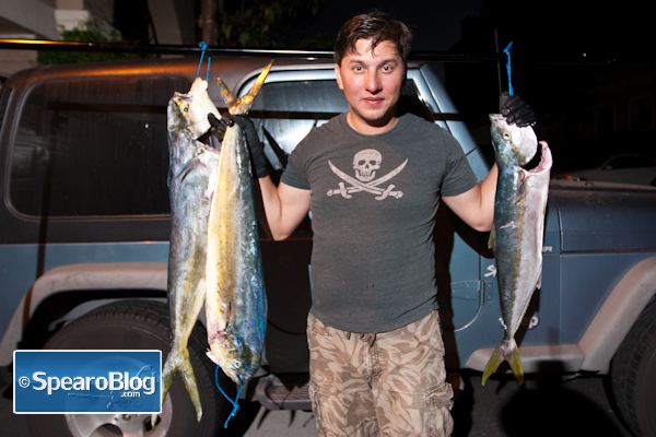Spearfishing Yellowtail and Dorado
