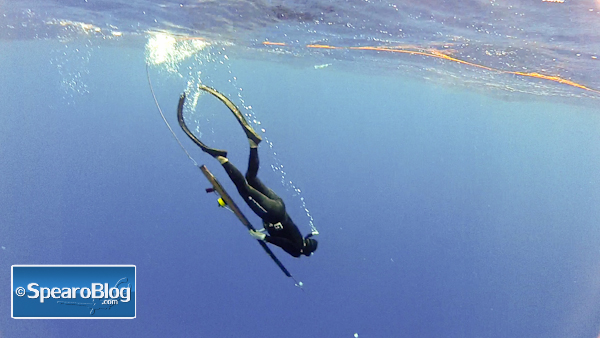 Spearfishing Rules