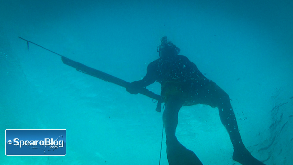 Spearfishing Video Montage 2012