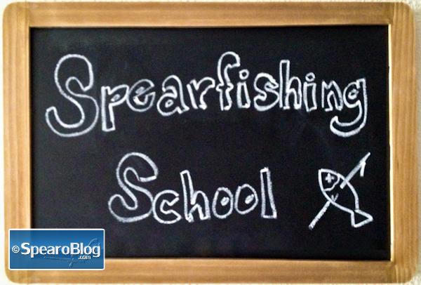 Spearfishing School