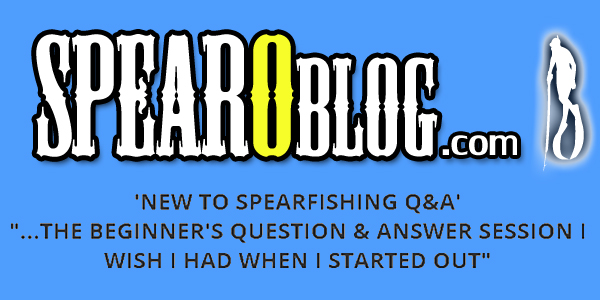 Spearfishing Beginner LIVE Q&A Session