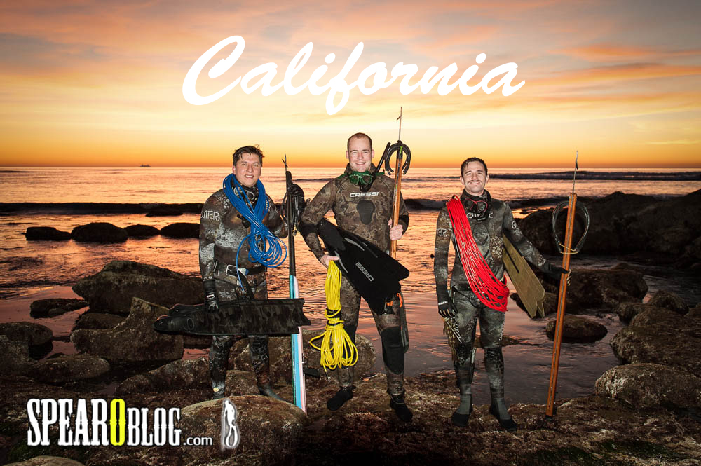 Spearfishing California Style